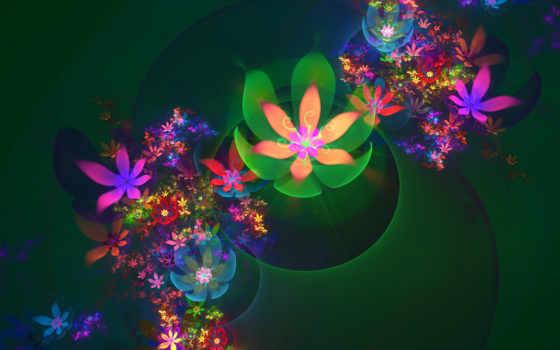 сборник, flowers