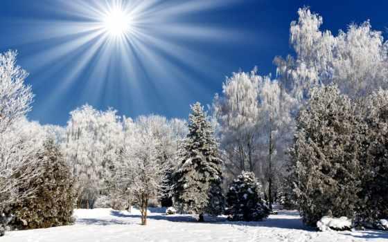 winter, природа, времена