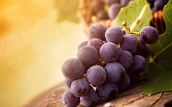 виноград, eда, svet