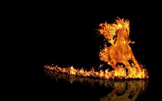 black, огонь, лошадь, фон, абстракция, images, photoshop, правильно, run,