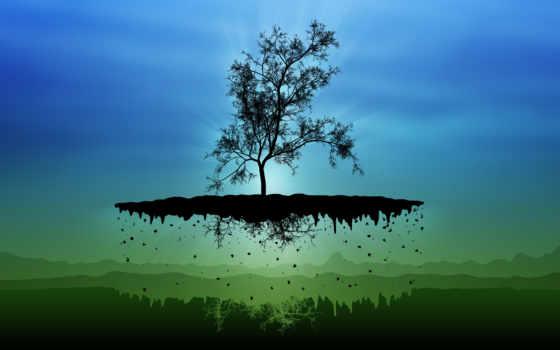 flying, дерево, studio, влад, walls, открыть, плакат, off, blue,
