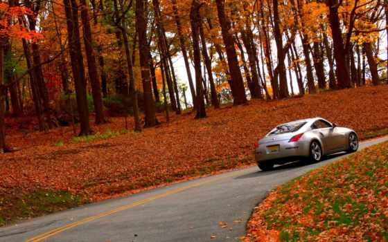осень, авто, nissan, лес, автомобили, машины, самых, дорога, природа, картинка,