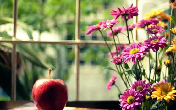 цветы, title, цветочек, розовый, показать, kartinika, free, apple, красивый, сердце, наклейка
