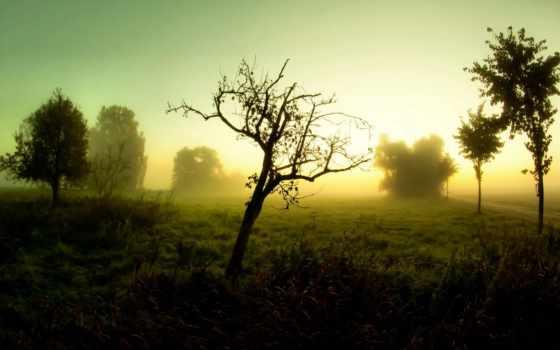 туман, дорога Фон № 32054 разрешение 1920x1080