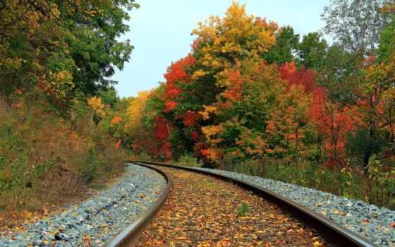 осень, красивые, осени