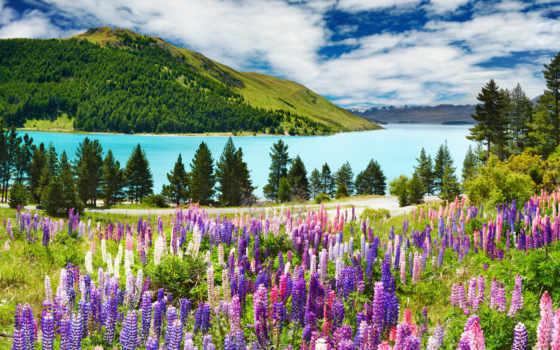 природа, озеро, click, one, landscape, лес, горы, луг, природы, осень, гора,