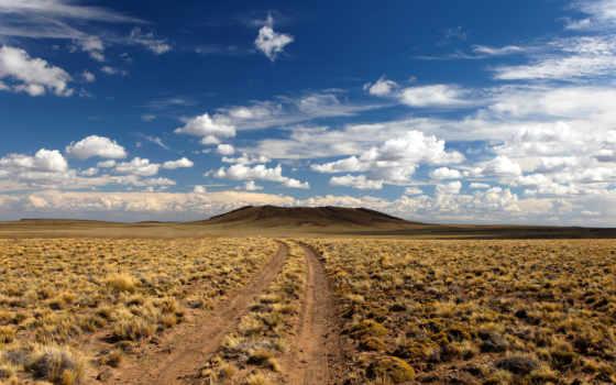 пустыня, дорога, растительность, ноутбук, планшетный, телефон, mac,