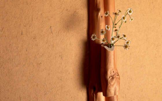 минимализм, cvety, лейкопластырь, букет, ромашки, дерево, стена, свет,
