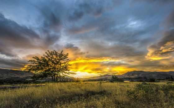 небо, трава, ipad, sun, город, природа, oblaka, долина, закаты, рассветы, рисунки,
