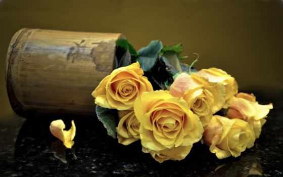 картинка, розы, розовые, желтые, орхидея, букет, орхидеи, ваза, cvety, лепестки,