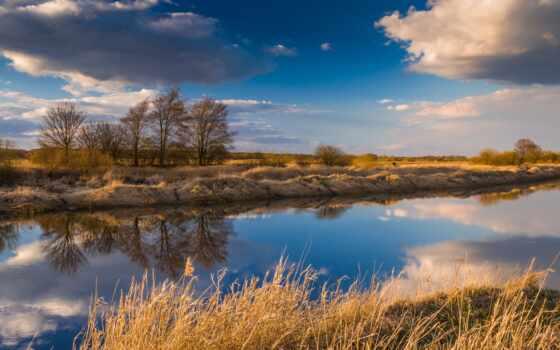 природа, фон, отражение, поле, облако, первую, во, зелёный, река, дневной, дерево