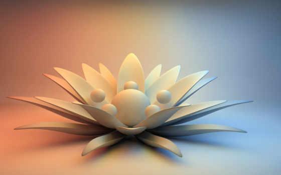 цветы, камень, абстракция