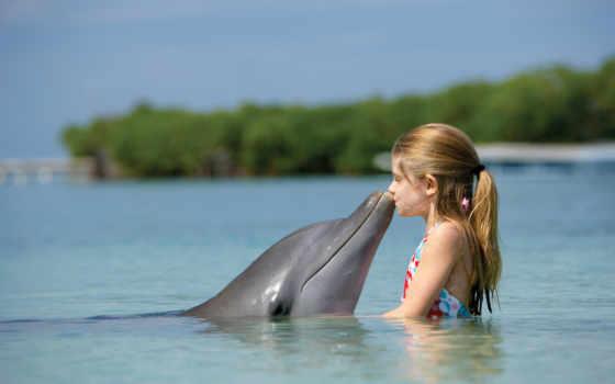 дельфин, ребенок, девушка