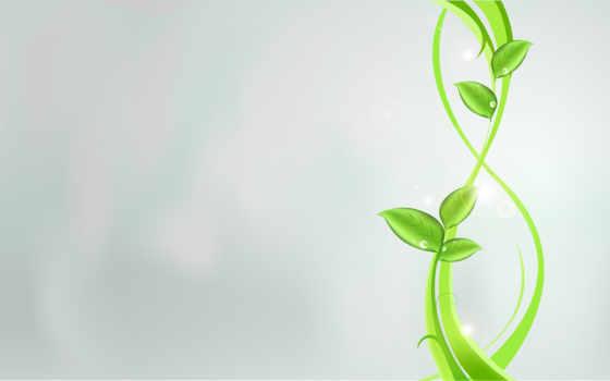абстракция, листва, зеленое