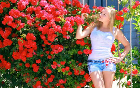 devushki, качественные, liveinternet, широкоформатные, кусты, представлены, роз, природой, her, высоком,