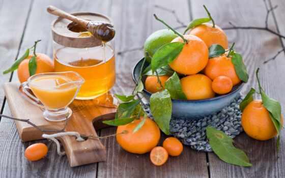tangerine, juice, цитрус, home, растение