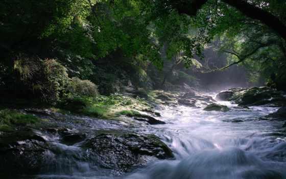 река, лес, скалы