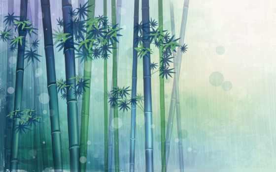 бамбук, pinterest, зелёный, more, об, see,