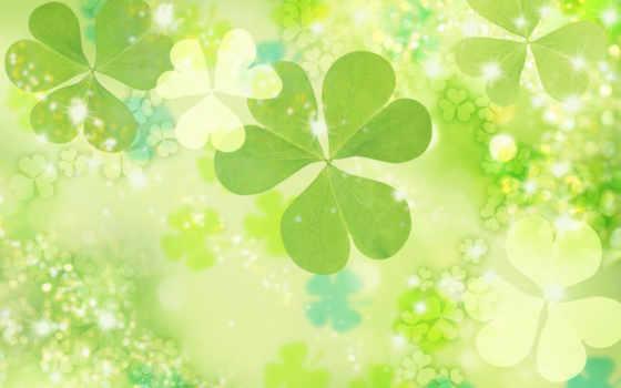 clover, цветы, shine, гладь, сияние,