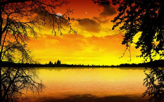 осенние, осень, природа, plastilin, ветви, луна, trees, mixed,