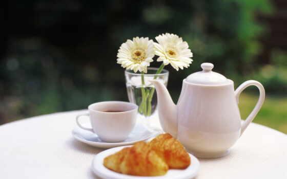 утро, род, настроение, postcard, день, красивый, субботний, wish