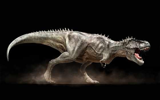 trex, динозавр, клыки, пасть, dinosaurs, черный, rex, animal,