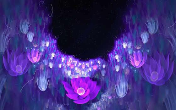цветы, фиолетовые, природа