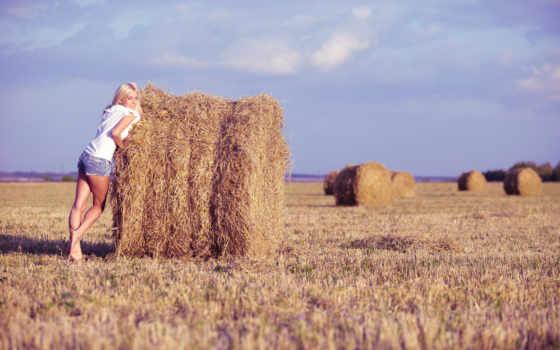 девушка, поле, sena