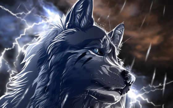 волк, art, wolfroad