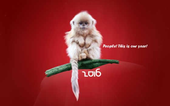год, new, обезьяны, праздники, картинка, дек,