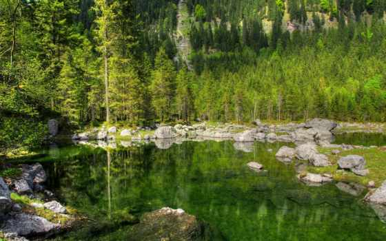 безмолвие, mohammad, природа, лес, basereh, камень, озеро, горы,