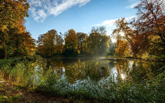 holland, пруд, haar, trees, park, красивые, summer, castle, природа,