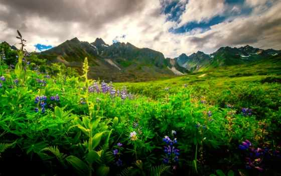 nyári, kép, горы, холмы, красивые, небо,