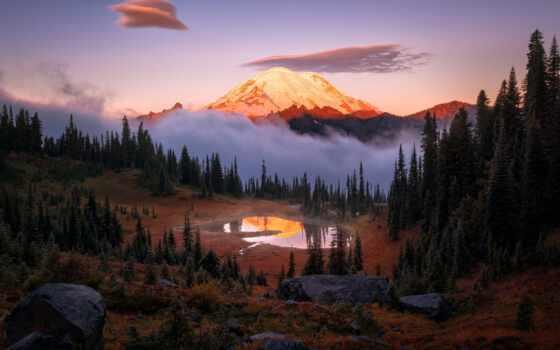 гора, сша, рейнир, mount, national, park, небо, лес, стратовулкан