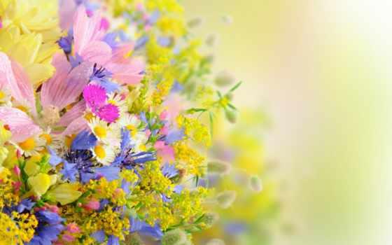 цветы, букет, букеты, цветов, summer, композиций, drops, petals, daisies,