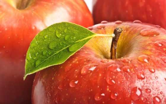 apple, яблоки, прикольные, красное, tochka, oboi,