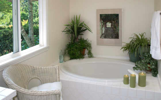 ванной, цветы, растительность