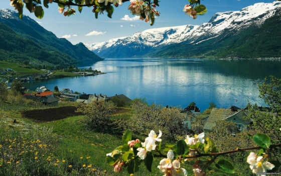 норвегия, норвегии, priroda