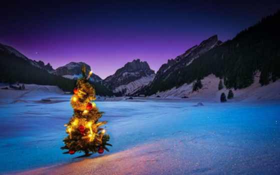 new, год, дерево, снег, winter, garland, праздник, картинка,