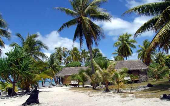 playa, palmeras, imagenes, cabañas, calidad, alta, amigos, fotografía,
