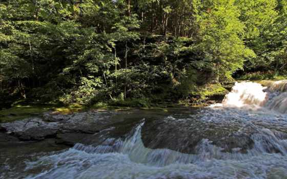 капризная, горная, река, дек, дорога, лес, небо, природа, мар, дата, рейтинг,