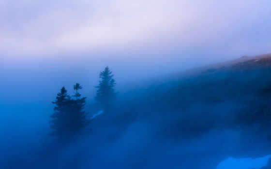 ,, небо, туман, туман, атмосфера, дерево, утро, горная станция, облако,