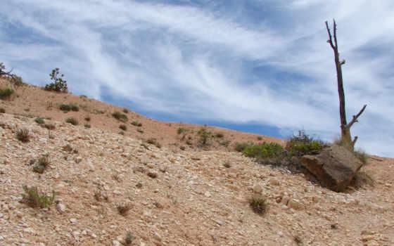 природа, desert