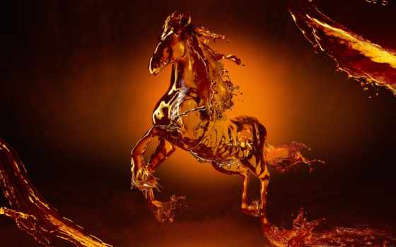 horse, liquid
