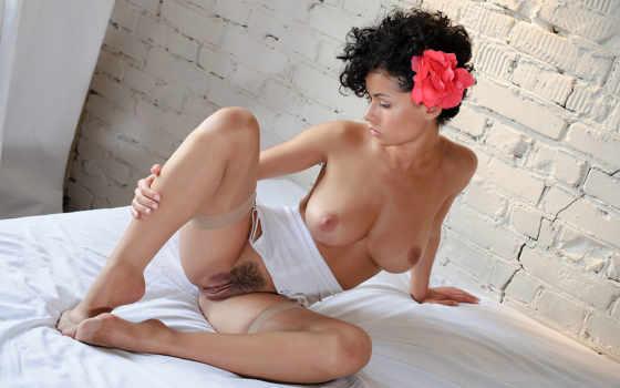 ,эротика, голая, галышок, pammie lee, грудь, вагина, писька, чулки, большая грудь,pussy