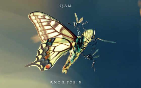 amon, tobin, isam Фон № 96507 разрешение 1920x1200