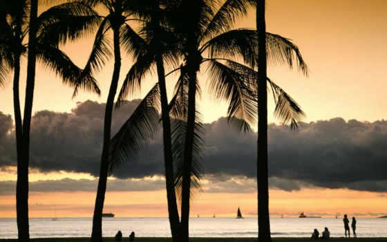 hawaii, oahu, пляж, naturaleza, природа, paisaje