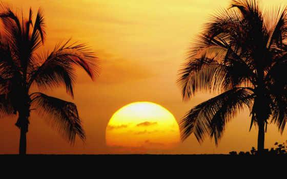 пляж, fond, ecran, закат, природа, цитата