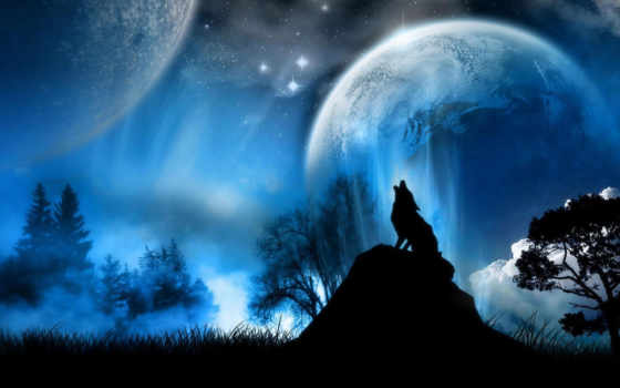 wolf, fantasy