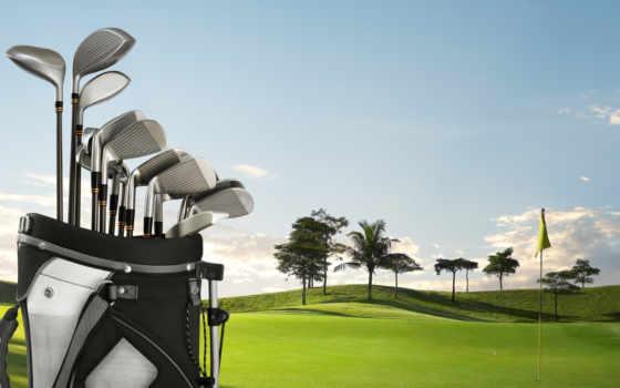 golf, пальма, трава, флаг, desktop, bag, club, stock, картинка, free,